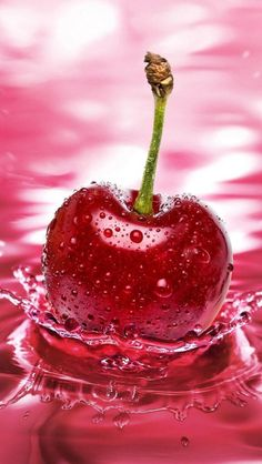 Apple Think Cherry wallpapers Wallpapers) – HD Wallpapers Apple Wallpaper, Wallpaper Iphone Cute, Cellphone Wallpaper, Nature Wallpaper, Mobile Wallpaper, Cute Fruit, Red Fruit, Colorful Fruit, Fruit Art
