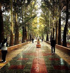 bagh-e fateh / Tennis center club --- Karaj - Iran