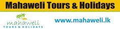 Tours Holidays, Sri Lanka, Touring, Meet, Good Things, Facebook, Twitter
