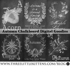 Autumn Chalkboards