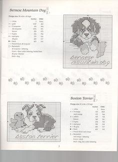 Bernese and Boston terrier Cross Stitch Charts, Cross Stitch Designs, Cross Stitch Patterns, Cross Stitching, Cross Stitch Embroidery, Dog Crafts, Dmc, Dog Pattern, Cross Stitch Animals
