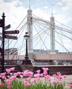 Albert Bridge, Chelsea, Kensington and Chelsea British Holidays, Visit Britain, British Travel, Lets Run Away, Kensington And Chelsea, Over The Bridge, Holiday Lettings, London Pictures, London Life