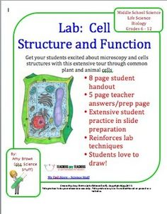 Biology Lab: Cell Structure and Function. This is a very extensive lab lesson plan on cell structure and function. This lab can be used with grades 6 through 12. It is great for younger students just learning about cells, and it can be a great review for older students. This lab would be a great activity to review the care and use of a microscope.