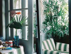 em casa, lane marinho | as plantas estão em todo canto, na sala e no terraço que rodeia o apartamento