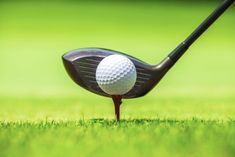 stock photo of horizontal closeup golf ball and club with tee on green grass Golf Mk4, Golf Sport, Chelsea Nyc, Golf Gps Watch, Golf Apps, Golf Pride Grips, Golf Simulators, Public Golf Courses, Woods Golf