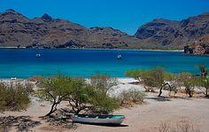 Puerto Agua Verde, Baja California Sur, Sea of Cortez, Mexico