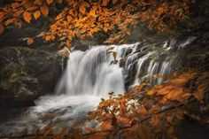 Autumn in the gorge #autumnvibes #autumncolors #autumnstream #autumnwaterfall #redorangeyellow #changewheather #leaves #relaxwalk #freshair #bestmedicine Orange Yellow, Waterfall, Relax, Leaves, Autumn, Outdoor, Instagram, Pictures, Outdoors