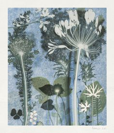 Blue Garden - These exquisite wild flower prints are by the English artist Amanda Ross.