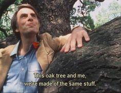 "Carl Sagan: ""This oak tree and me, we're made of the same stuff."""