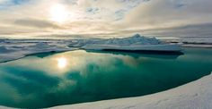 A melt pond in the Arctic ice. The Arctic is missing a chunk of sea ice the size of Mexico. While fall ushers in the season of sea ice growth, No… Arctic Habitat, Aquatic Ecosystem, Sea Ice, Big Oil, Science Photos, Environmental Issues, Photos Of The Week, Way Of Life, Places