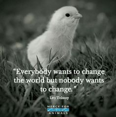 Be the change.                                                                                                                                                                                 More