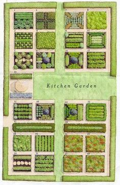 kitchen garden #provisionsfarms potager garden with the details of what is planted is on the link