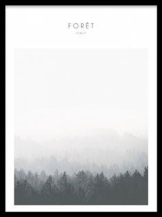 Posters med naturbild, skog, i svartvitt.