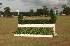 Steeplechase, FHP