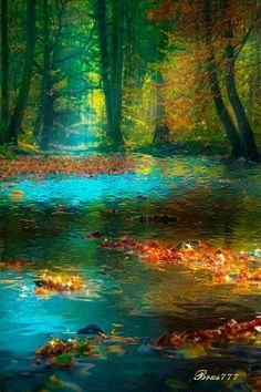 RUMA♥ ♠ Красота природы http://www.ebay.com/usr/debsshirtopia