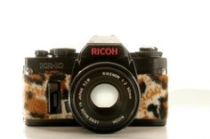 Free Image on Pixabay - Camera, Plush, Hipster, Leopard Advertising Industry, Beauty Industry, Fashion Beauty, Plush, Hipster, Branding, Hipsters, Brand Management, Hipster Outfits