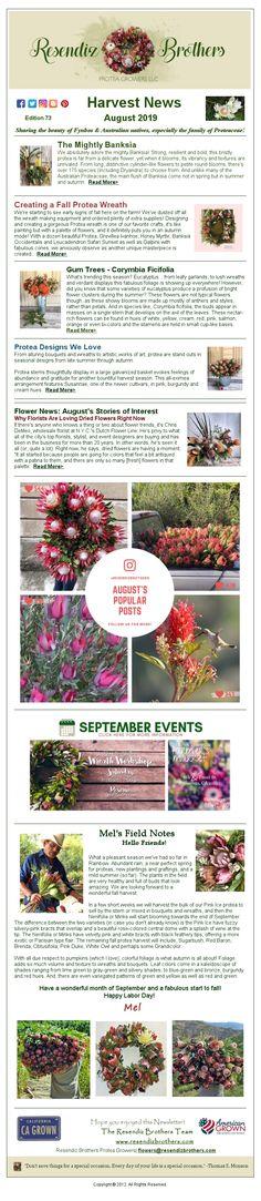 Harvest News from Resendiz Brothers - August 2019 September Events, Field Notes, Harvest
