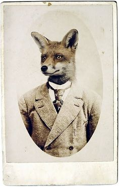 What a fox! (sorry) ~ Every gentleman looks better in a well crafted suit, designed by a master tailor from a company that began over gun powder and good scotch. William & Son brings  years in the bespoke tailoring industry to a line of custom made menswear. Masculine Scottish Tweed and a heritage for the sporting life make the garments classic and functional.