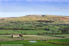 An exclusive collection of royalty free stock photos, discovery walks, greetings cards, prints and wall art. Yorkshire Dales, North Yorkshire, England And Scotland, I Fall In Love, Beautiful Landscapes, Britain, Dolores Park, Photo Galleries, Beautiful Places