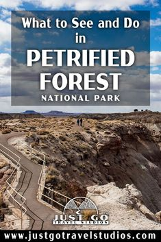Our blog will help you plan your vacation to Petrified Forest National Park.  This great park in Arizona is amazing-don't miss it! Petrified Forest National Park, Arizona Travel, What To Pack, Where To Go, Just Go, Falling In Love, National Parks, Vacation, How To Plan