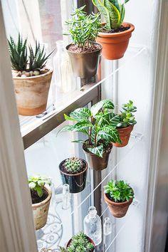 Originele raamdecoratie die je zelf kunt maken | Praxis blog