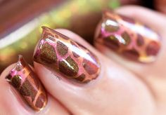 Lilypad Lacquer Exclusive Color4nails