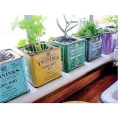 Cutest planter boxes ever!!!