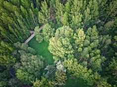 Lovely Helsinki Greens. Would you want to walk here?  @unumdesign #unumfam #drones#dronestagram #droneart #dronesdaily #droneporn #dronepicoftheday #dronepics #droneartwork #droneearth #droneepic #earth_shotz #shotzfromthesky #shotz__from__above #dronelife #dronefly #shotsfromabove #earthpix #earth_shotz #vanrenselaarfotografie #adroneventure #into.the.drones