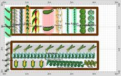 Garden Plan - 2015: Veg plot