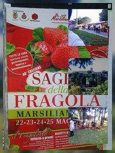 Strawberry fair in maremma  #marsiliana  #tuscany