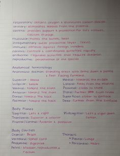 The girls at work seem to get a kick out of my handwriting. Here are some of my school notes. - Imgur:
