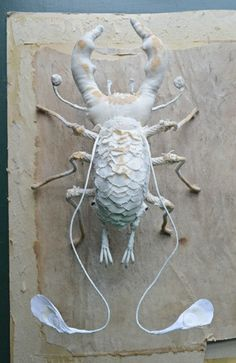 Mr. Finch - Soft sculpture beetle