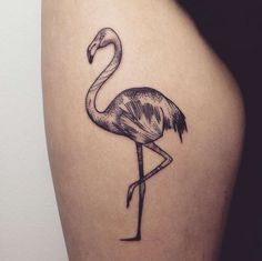 Dotwork Flamingo Tattoo by Maria Fernandez