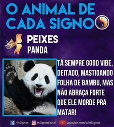 Read Animal De Cada Signo from the story Signos by Sexytaekookv (𝙶𝙰𝚃𝙸𝙽𝙷𝙰) with reads. What Is Your Sign, Signo Libra, Mbti, Panda Bear, Memes, Tarot, Zodiac Signs, Funny Quotes, Humor