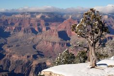 Grand Canyon visitors will see changes