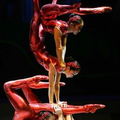 Featuring the unbelievable contortionists from Guandong Acrobatic Troupe of China (Zhang Neve, Zhang Wan, Wang Xiaoqian, Shi Wenjing)  #contortion #contortionist #flexibility #yoga #fitness #cirque #circus #gymnastics #rhythmicgymnastics #backbend #handstand #art #strenght #ballet #dance #handbalance #chinese #group #guandong #cirquedusoleil #beijing #hollowback #bend #acrobatics #acro #gymnasticsshoutouts #circo #strong #cheststand #balance