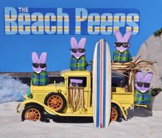 Cute! | Beach Boy Peeps | Created by Brad Vogt from the Peeps Show VI contest @The Washington Post