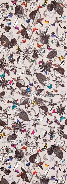 Osborne & Little: W6596-01 An exotic composition of birds and foliage. Digitally printed with a repeat of 150cm (59ins).   WALLPAPER ROLL SIZE 70cm x 9m (27½ ins x 9¾ yards) WALLPAPER REPEAT 150 (59) CARE AND CLEANING Spongeable