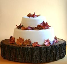 by Andie Specialty Sweets: http://www.etsy.com/listing/79119243/edible-sugar-fall-leaves-2-dozen