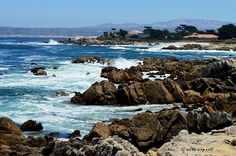 With views this beautiful how can you stay away from the Monterey Bay? #monterey #pacificgrove #sandcity #seaside #carmel #marina #salinas #mosslanding #California #montereybay #ocean #oceanpics #oceanviews #beautiful_view #beautiful #westcoast #centralcoast #nature #travel #naturephotography #travelpics #naturepics #travelphotography #cali_nature #california_igers @seemonterey @pgchamber @visitcalifornia @rawcalifornia #mosslandinglocals #montereybaylocals - posted by Cat Harper…