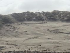 Texel Sturm