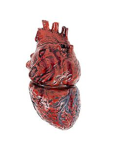 Human Heart - Decorations  - Spirithalloween.com