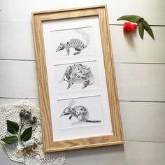 Fauna out of Flora  . The first of my little art print bundles to be listed. Im planning some more so stay tuned! . . . . . . . . . . . . . . . . . . . . #numbat #echidna #bilby #australiana #modernaustraliana #australianart #australianartist #australianflora #australiananimal #australiananimals #eucalyptus #nativegarden #australiannatives #linedrawing #finelinerart #perthart #aussiebush #etsyau #australiananimalart #australianwildflower #gumdots #myhanddrawnheart