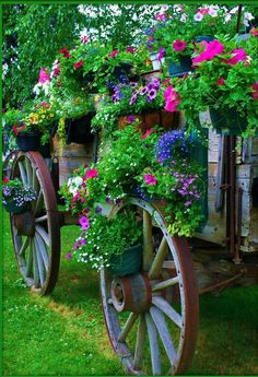 37 Stunning Spring Garden Ideas for Front Yard and Backyard Landscaping Flower Cart, Flower Pots, Potted Flowers, Flower Tree, Rustic Gardens, Outdoor Gardens, Old Wagons, Pot Jardin, Cute Cottage