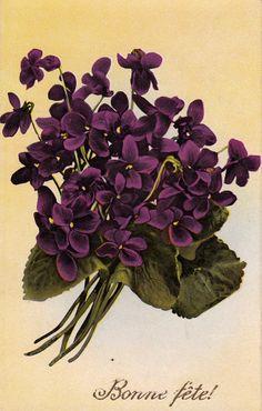 Bonne Fete Fleurs Fantaisie 1914