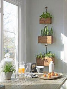 hanging indoor garden. recycled wood boxes.