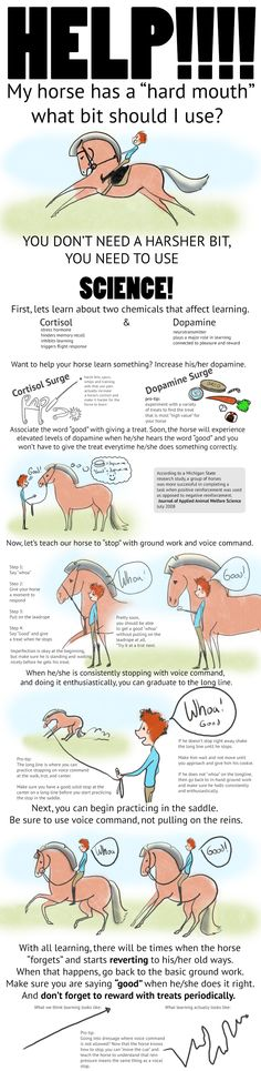 Help! My Horse is Too Strong (Horse Tutorial) by carlylyn.deviantart.com on…