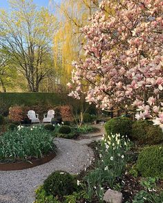 Inspiring small garden designs ideas for small home yard 10 Porch Garden, Garden Edging, Home And Garden, Back Gardens, Outdoor Gardens, Gravel Landscaping, Wonderful Day, Small Garden Design, Trees And Shrubs