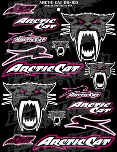 Thinking my machine/car/helmet could use some Arctic Cat flare!