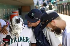 Fernando Rodney gets a pie in the face from Felix Hernandez after the Mariners win! Dustin Ackley got pied too.